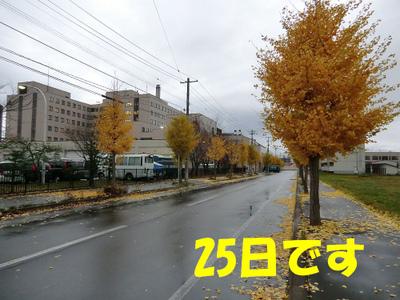 1110251